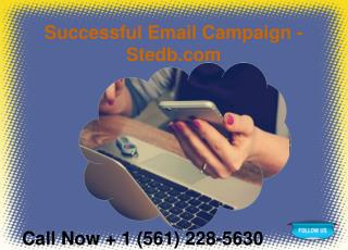 Successful Email Campaign - Stedb.com