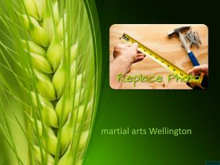 A New Way to Think About Martial Arts Training Wellington