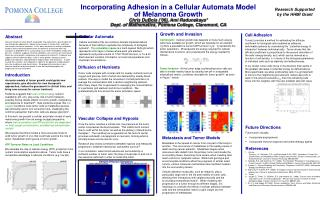 Incorporating Adhesion in a Cellular Automata Model  of Melanoma Growth Chris DuBois  06, Ami Radunskaya Dept. of Mathem