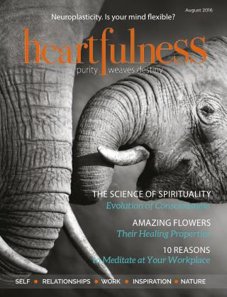 Heartfulness Magazine Issue 10