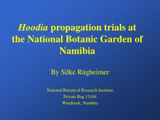 Hoodia propagation trials at the National Botanic Garden of Namibia