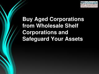 Buy Aged Corporations from Wholesale Shelf Corporations and Safeguard Your Assets