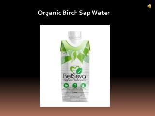 Organic Birch Sap Water