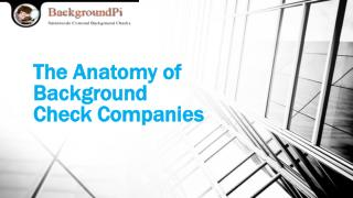 The Anatomy of Background Check Companies