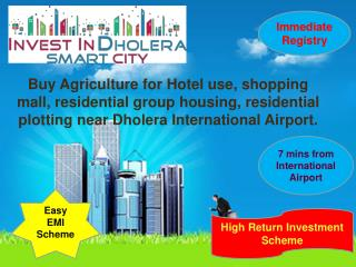 Raw land for sale in Dholera International Airport