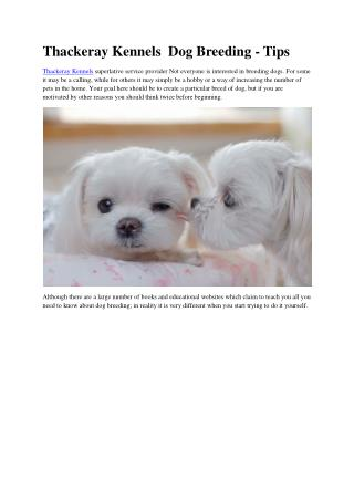 Thackeray Kennels  Dog Breeding - Tips