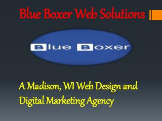 Blue Boxer Web Solutions