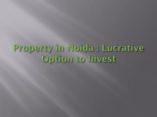 Property in Noida: Lucrative Option to Invest...!!!