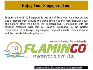 Enjoy Your Best Singapore Tour of Life with Flamingotravels