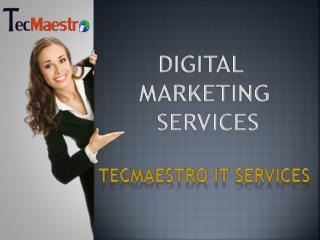 Digital Marketing Plan By Geeksquares - Social Media Optimisation