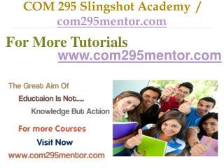 COM 295 Slingshot Academy  / com295mentor.com