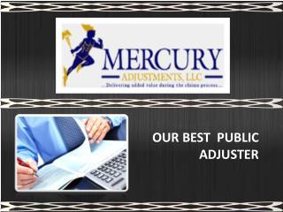 Public Adjusters