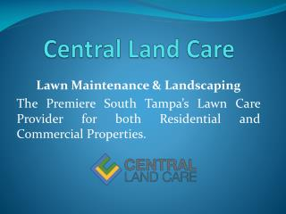 South Tampa Lawn Care| South Tampa Landscaping