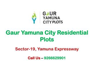 Gaur City Residential Plots Yamuna Expressway – Investors Clinic