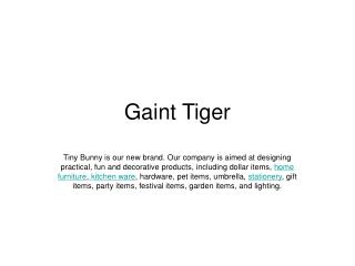 Ningbo Giant Tiger Co. Ltd