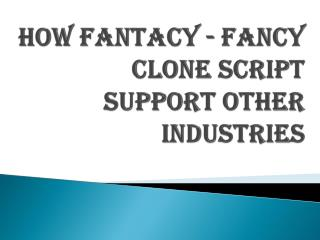 How fantacy - fancy clone script support other industries