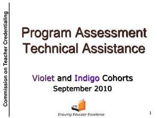 Program Assessment Technical Assistance