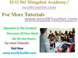 ECO 561 Slingshot Academy / eco561outlet.com