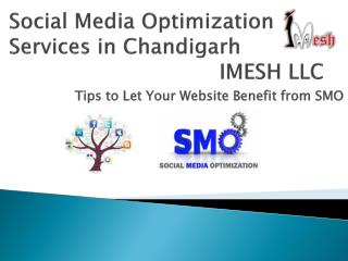 Social Media Optimization Services in Chandigarh