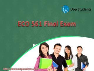 ECO 561 Final Exam | ECO 561 Final Exam Questions & Answer 2016,2013