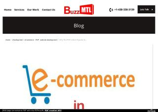 Why The PHP is More Popular for Ecommerce Website Development?