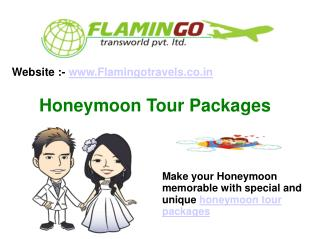 Plan a Honeymoon Tour Packages in most romantic destination of India By Flamingo Travels