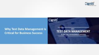 Why Test Data Management is Critical for Business Success