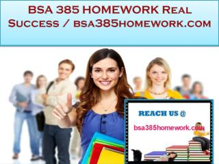 BSA 385 HOMEWORK Real Success / bsa385homework.com