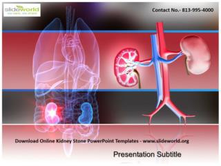 Download Kidney Stone PowerPoint Templates