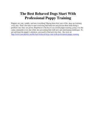The Best Behaved Dogs Start With Professional Puppy Training