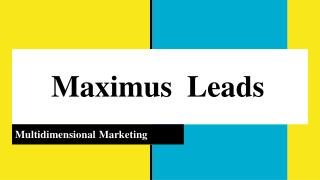 Digital Marketing Company in Pune | Maximus Leads