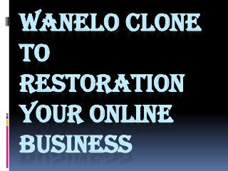 Wanelo clone to restoration your online business