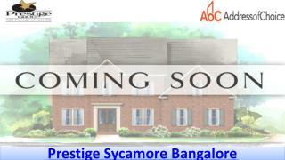Prestige Sycamore Call @ 9066021610