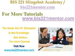 BIS 221 Slingshot Academy / bis221mentor.com