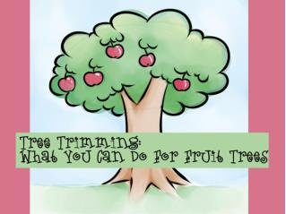 Tree Trimming-What You Can Do For Fruit Trees