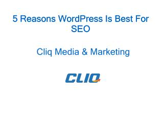 5 Reasons WordPress Is Best For SEO