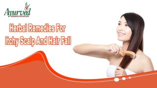 Herbal Remedies For Itchy Scalp And Hair Fall