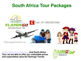 An Exotic South Africa Tour Packages | Flamingo Travels