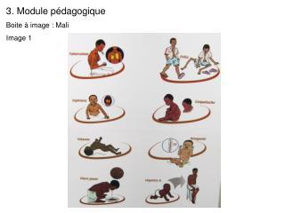 Module p dagogique  Boite   image : Mali  Image 1