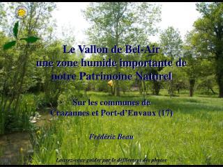 Le Vallon de Bel-Air une zone humide importante de notre Patrimoine Naturel