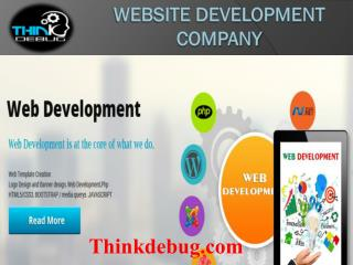 Thinkdebug is a multinational IT Software development company in indore.
