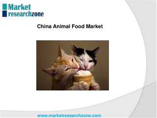 China Animal Food Market