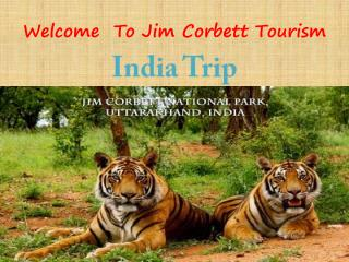 Jim corbett wildlife tour package