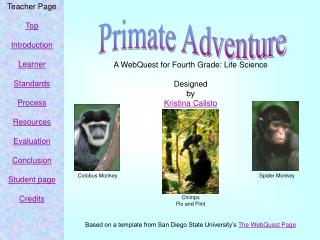 A WebQuest for Fourth Grade: Life Science  Designed by Kristina Calisto            Chimps Flo and Flint   Based on a tem