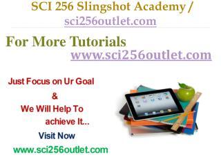 SCI 256  Slingshot Academy / sci256outlet.com