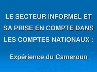 LE SECTEUR INFORMEL ET SA PRISE EN COMPTE DANS LES COMPTES NATIONAUX :  Exp rience du Cameroun