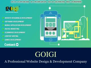 GOIGI - Website Design and Development Portfolio