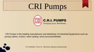 Borewell Pumps Manufacturers | CRI
