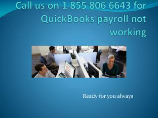 1 855 806 6643 QuickBooks payroll not working