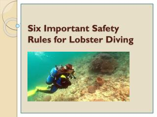 Six Important Safety Rules for Lobster Diving